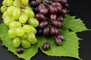 grapes-300,200