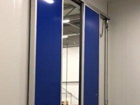 Two-winged Door